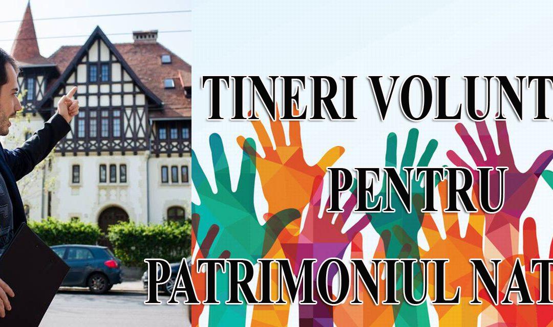 Stagiu de voluntariat: Detalii despre Tineri Voluntari pentru patrimoniul românesc